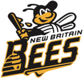 NB_Bees