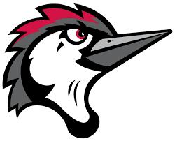Logo Fayeteville