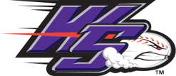 Logo Winston-Salem.png