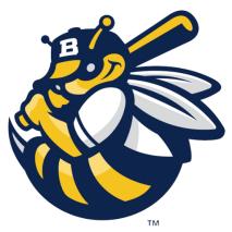 Burlingon Bees, Logo.png