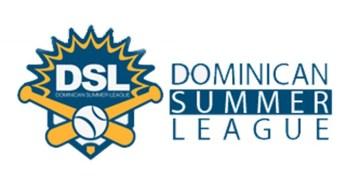 DSL Logo 2